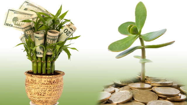 Vastu Shastra For Prosperity