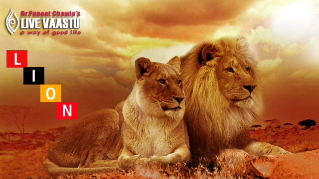 Vastu Tips on Lion - The King of the Jungle