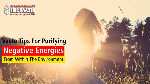 Best Vastu Tips For Purifying Negative Energies From Within The Environment