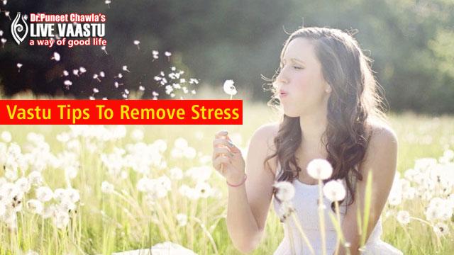 Vastu Tips To Remove Stress
