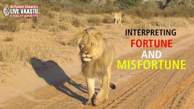 Vastu Tips For Interpreting Fortune And Misfortune