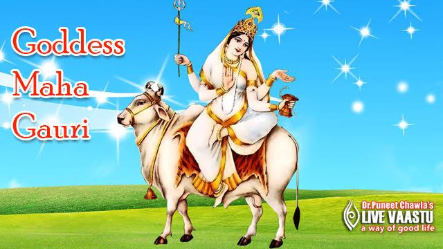 Worship Goddess Maha Gauri on the 8th day of Navaratri