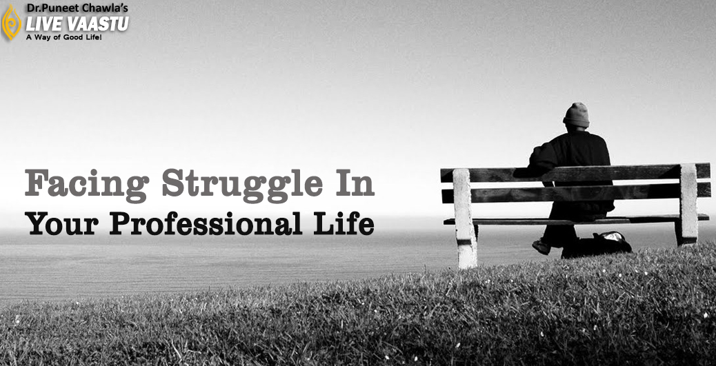 Facing Struggle In Your Professional Life