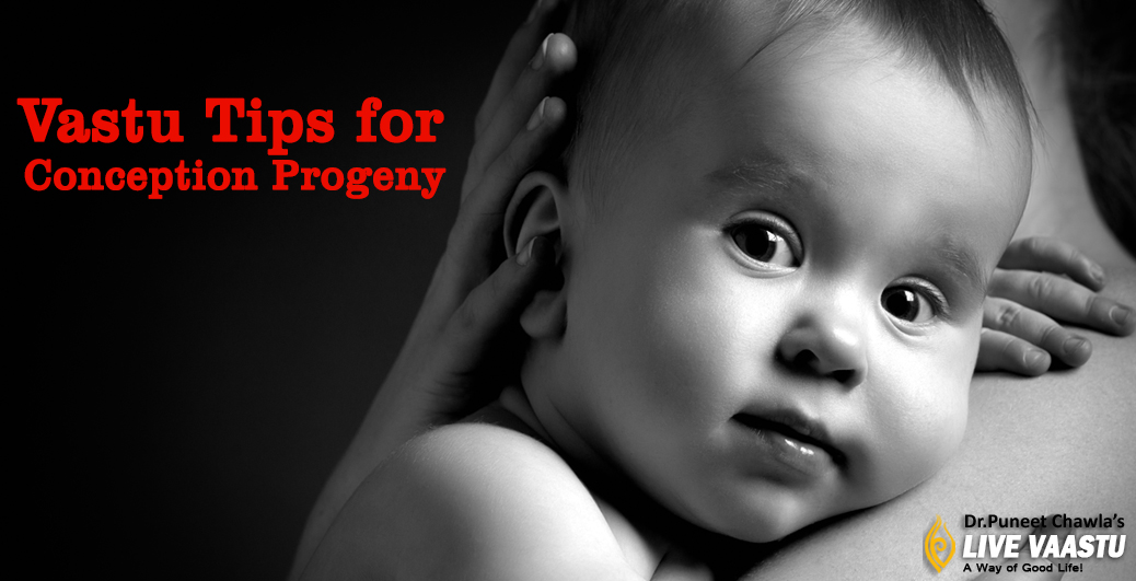 Vastu Tips for Conception Progeny