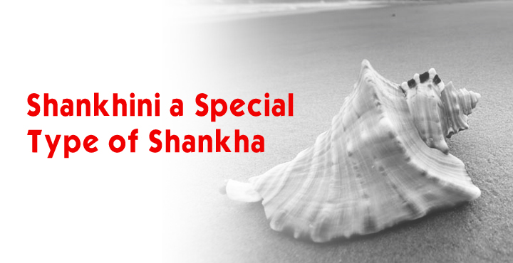 Shankhini-A Special Type Of Shankha