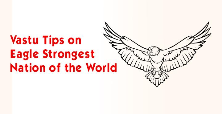 Vastu Tips On Eagle - Strongest Nation Of The World