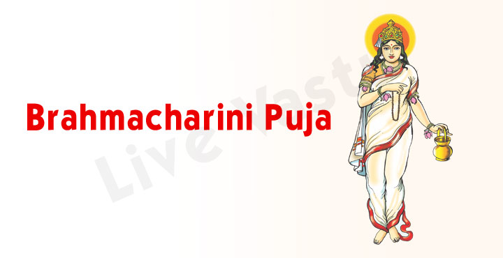 Goddess Brahmacharini Puja - Second Day of Navratri