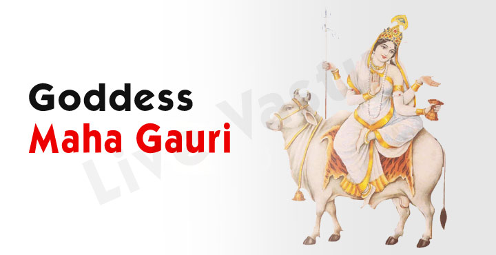 Worship Goddess Maha Gauri on the 8th day of Navaratri
