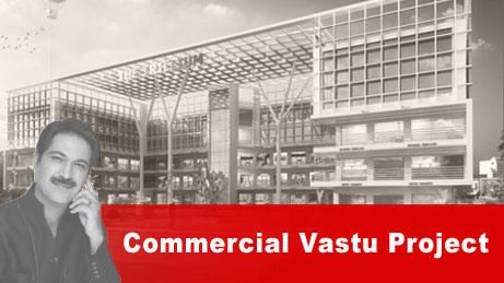 Commercial Vaastu Project