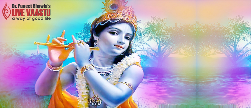 Ever Imagine Why Is Krishna Blue