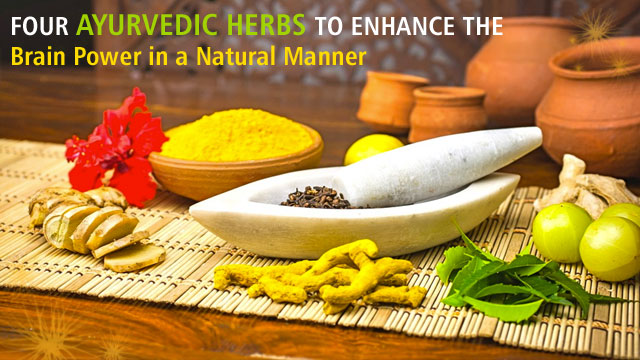 Four Ayurvedic Herbs To Enhance The Brain Power In A Natural Manner