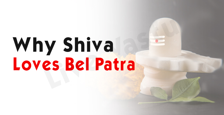 why shiva loves bel patra
