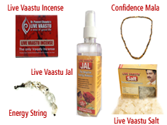 Live Vaastu Study Package