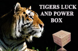 Live Vaastu Tigers Luck and Power Box