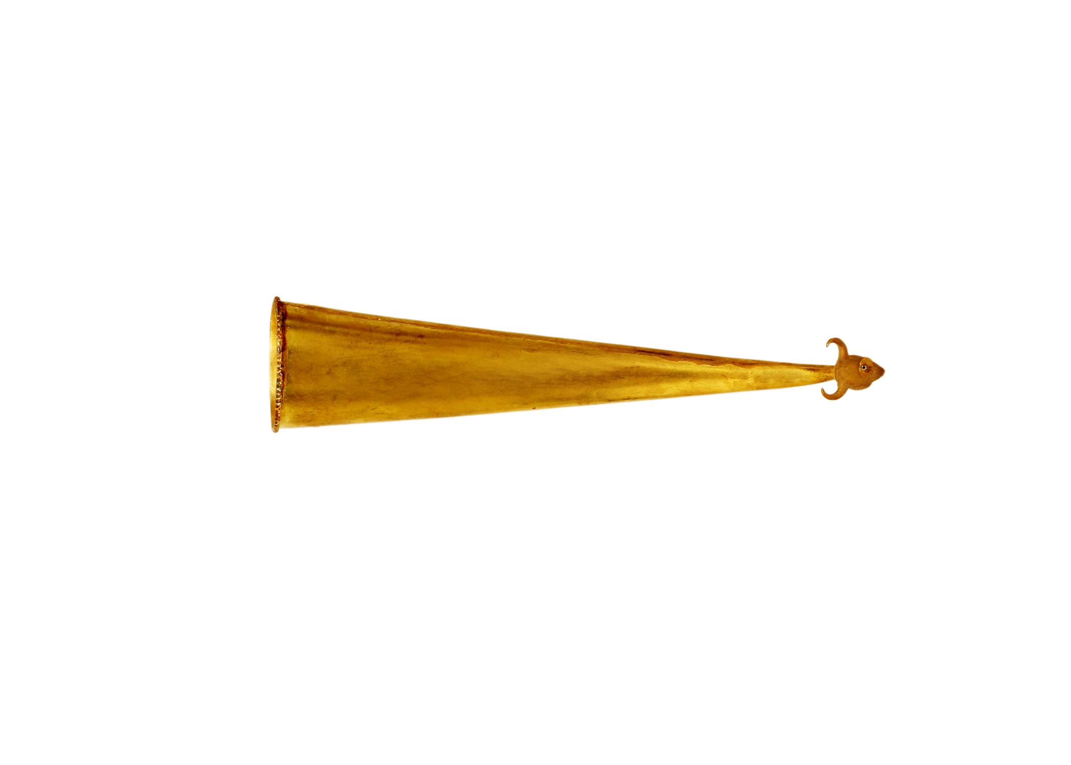 Sarangi Model 2
