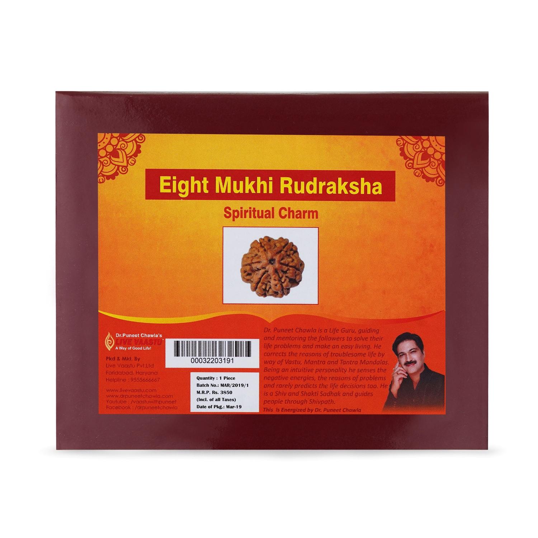 Eight Mukhi Rudraksha