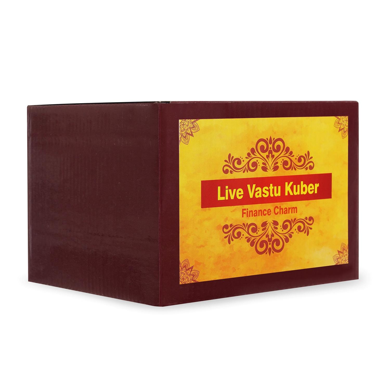 Live Vastu Kuber