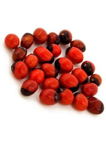 Sacred Chirmi Seeds