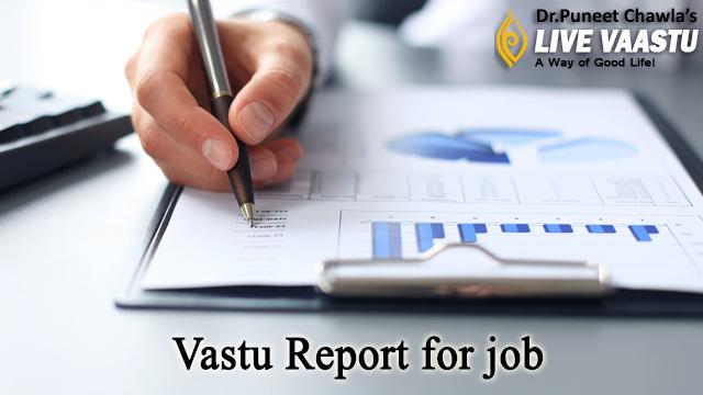 Vastu report for job