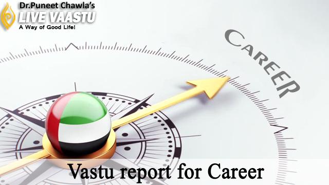 Vastu Tips for Career