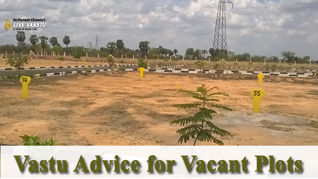 Vastu Advice for Vacant Plots