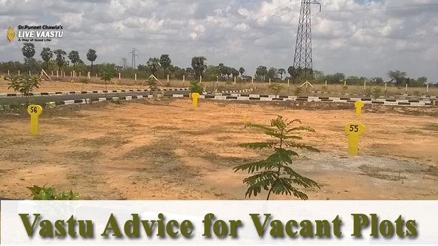 Vastu Advice for Vacant Plots