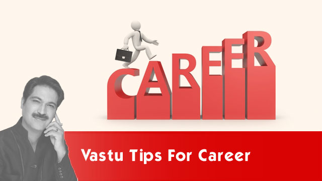 Vastu Tips for Career