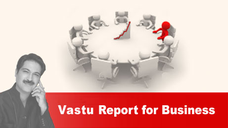 Vastu report for Business