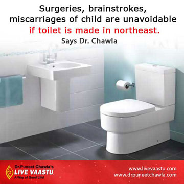 north-east toilet make you sick and bring lots of diseases