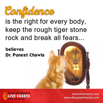 Place rough tiger stone in your house for get confidence and break all fears.