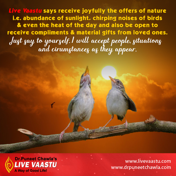 As per Dr. Chawla, Nature give us happiness in Sun light and Birds chirping.