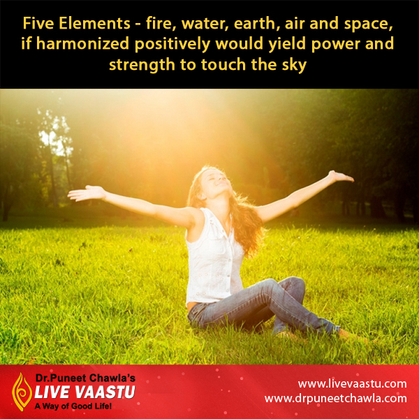 As Per Dr. Puneet Chawla, Five elements of nature give us positivity and strength.