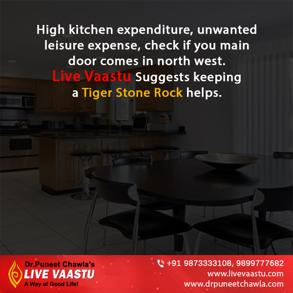 As Per Suggests by Dr. Chawla, Keep tiger stone rock in your kitchen will reduce the high kitchen expenditure.
