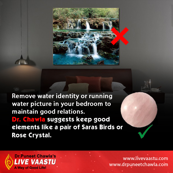 Dr. Puneet Chawla Suggests,  Place Rose Crystal and Saras birds in your bedroom for maintain good relation.